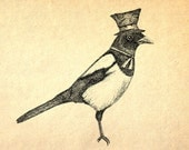 Hello Mister Magpie- A4 bird art print by Jon Turner- pen and ink Victoriana artwork