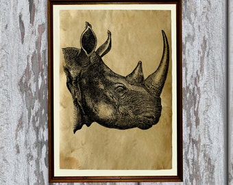 Animal illustration Rhino print nature art Old paper home decor AK274