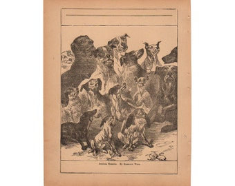 Harrison Weir Pack of Dogs, Hounds Antique Dog Print 1890 Framable Art Artist Signed Book Page