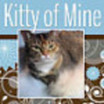 KittyofMine
