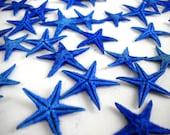 "Multipack Blue Tiny Starfish 1/2-1"" bulk order sea life ocean beach nautical Hawaii seashell decor gift"