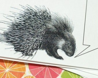 PORCUPINE PLATITUDES ... Mini Notecards . Stocking Stuffer . Captioned Critters . Cute Rodent . Gift Cards . Folded Notes . Adorable Animal
