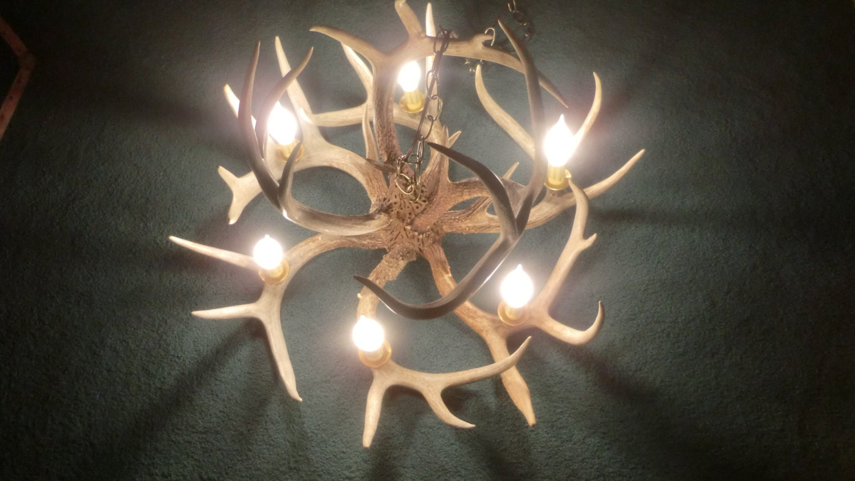Deer Antler Chandelier 6 Light Real Antlers
