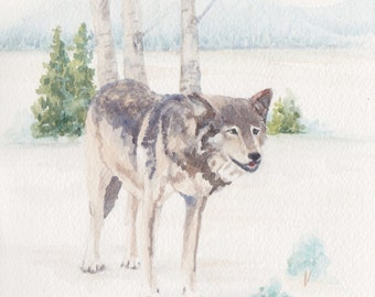 Wolf 1 in the Lamar Valley in Yellowstone National Park Original Painting