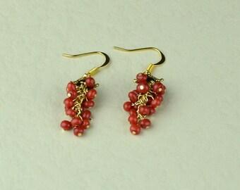 Red Bamboo Coral Earrings. Dangle Earrings. (E10001)