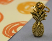 Gold Pineapple Hawaii Tropical Caribbean Charm - pewter