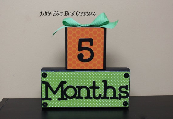 Age blocks for photography prop - baby's first year - age display - birthday decor