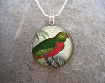 Parrot Jewelry - Glass Pendant Necklace - Victorian Bird 18