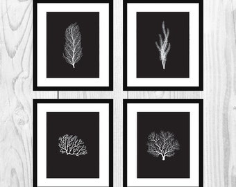 "Black Nautical Coral Printable Art for Bathrooms (Set of 4, 8x10"")"