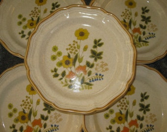 Mikasa Stoneware Fresh Floral Discontinued Salad Great, Garden Club Plates, Set of 5, Great