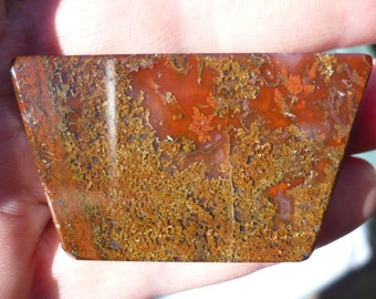 Gigantic Murray Mountain Moss Agate with Red Plume (Moss & Plume in Red Chalcedony)