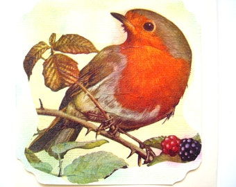 Post card and matching envelope the pretty Robin and blackberries.