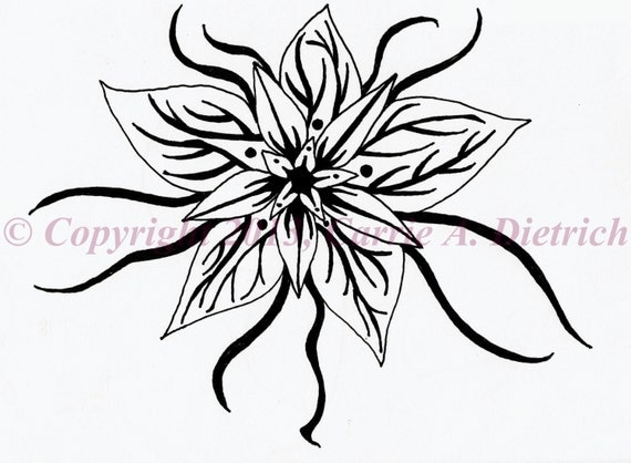 Star Flower Drawing Pen And Ink Flower Star
