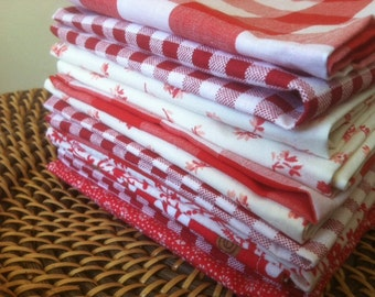 Lunch box Napkins, Set of 12, Eco Friendly, Shades of RED, by CHOW with ME