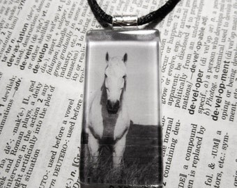Photo Necklace - Rectangle Glass Tile Necklace - 1 inch by 2 inches -White Horse - Ohio - Custom Jewelry
