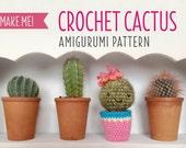 Cute Amigurumi Cactus Crochet Pattern