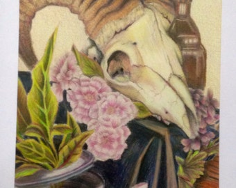 Colored Pencil Still Life- ONE OF A KIND- Framed