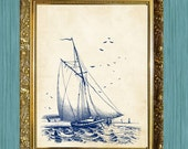 Sail Boat Print  Sea Life Art Print Bathroom Print 8 x 10 Ocean Art Natural History Blue