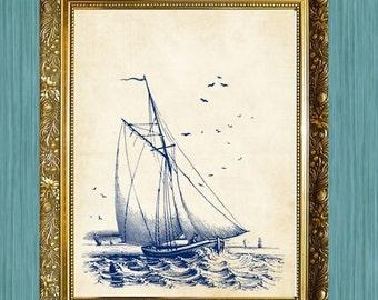 Sail Boat Print  Sea Life Art Print Bathroom Print 8 x 10 Ocean Art Natural History Blue