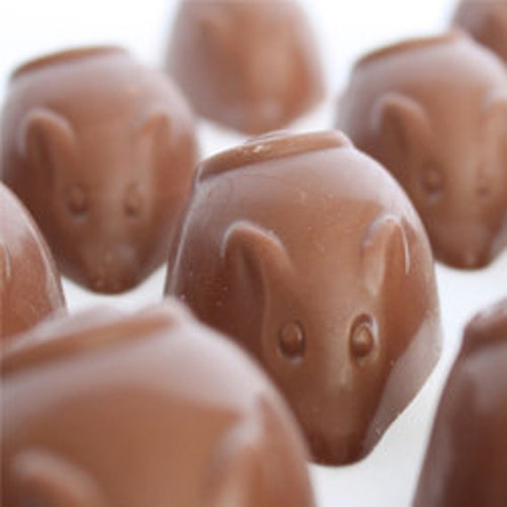 Spicy Rat Mexican Chocolate Truffle