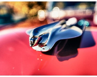Car Parts Photography, Vintage Hood Ornament, Metallic Photographic Print