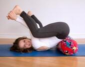Florescência Velveteen Yoga Bolster Case