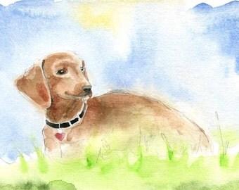 Dachshund Painting - Dog Art - Dachshund watercolor - fine art print