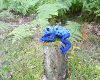 Needle Felted Poison Dart Frog, Decor