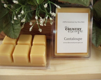 Cantaloupe Scented 100% Soy Wax Melt - The Sweetness of Summer -Triple Scented