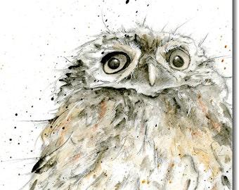 Owl's head blank greeting card
