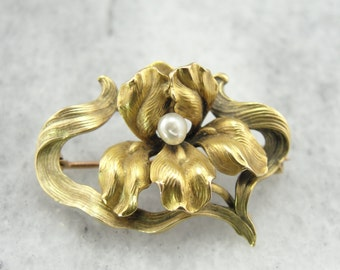 Art Nouveau Frilled Iris Pin with Pearl Center, Lovely Gold, Antique, Belle Époque 503NYR-N