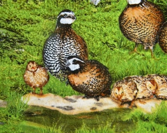 Birds of Flight--quail--fabric by the yard--Elizabeth's Studio, cotton