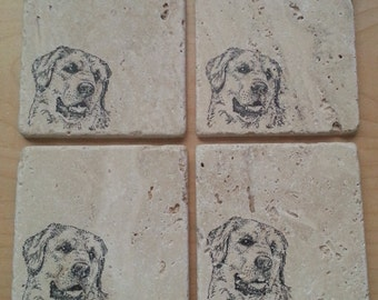 Natural Tumbled Marble Stone Golden Retriever Coasters