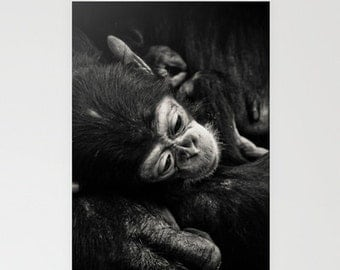 Baby Chimpanzee Note Cards Set of 3, black and whie animal photography, custom cards
