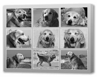 Your Dog's Photos Collage Custom Canvas Print. Gallery Wrapped Canvas ready to hang on the wall.