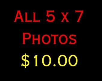 5 x 7 Photograph