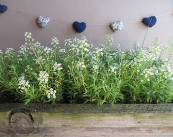 Mini heart garland - Heart banner - Wedding decor - Blue and white - Nursery decor - Birthday decor
