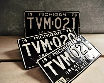 Michigan 1979 License Plates - Consecutive Numbers -Set of 3 -One Pair 021 & One Plate 020 Vintage Muscle Car Restoration Plates 0692