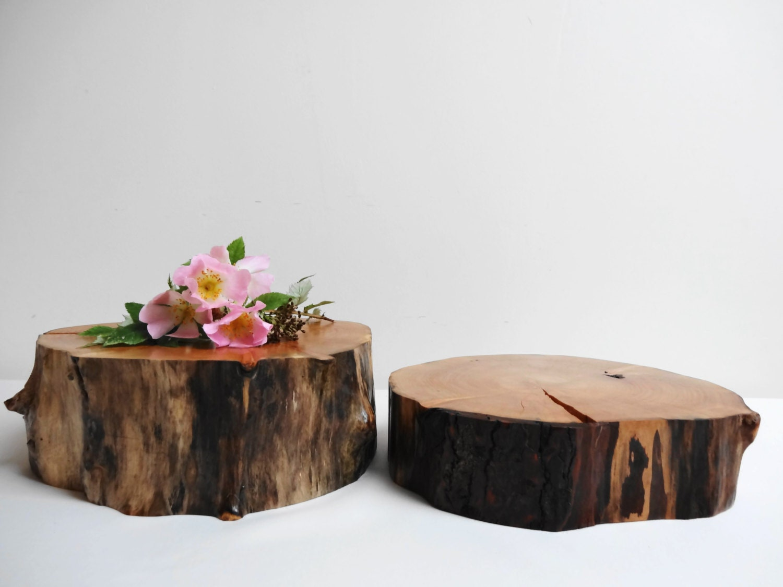 Tree Stump Stump Slices Trivet Cake Stand Cake Trivet