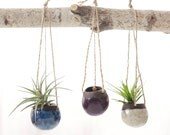 MADE TO ORDER Set of Three Small Hanging Planters in Dark Brown Clay.  Planters for Airplants in Oasis, Purple, and White.