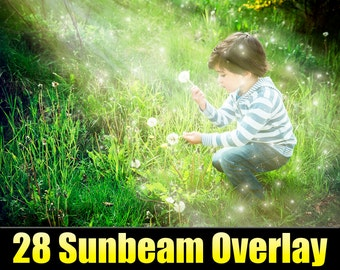 Photoshop Overlay - Sunray Sunbeam Lens Flare Sun - Glowing Dust