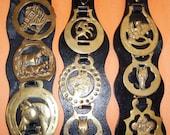BRASS BADGES EQUESTRIAN Lot 11 Vintage Medallions Kilverstone Wildlife Park England Fleur De Lis Leather Strap Hanging India Horseshoe Uk