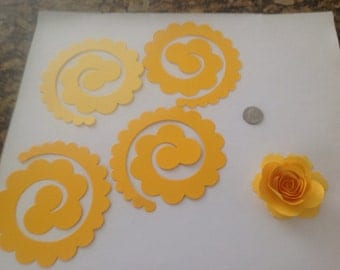 12 ready to make roses.