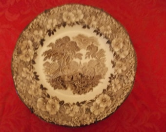 Two Wall Collectors Plates