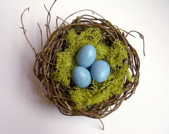 Willow bird nest w/ robin eggs