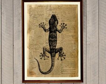 Lizard poster Reptile decor Animal print Dictionary page WA260