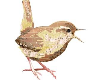 Wren - Bird - Songbird - Nursery Art - Wall Art - 8x8 Fine Art Print - Shakespeare's Menagerie