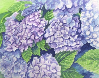 Watercolor Painting Hydrangea Blossoms