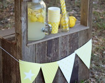 Mini Lemonade Stand Photography Prop