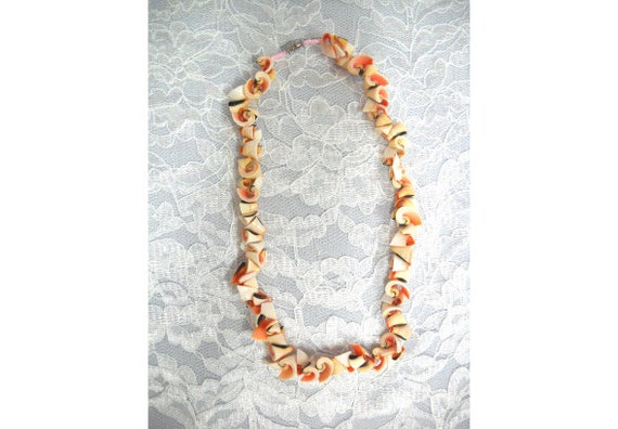peach sea shells scroll - photo #30